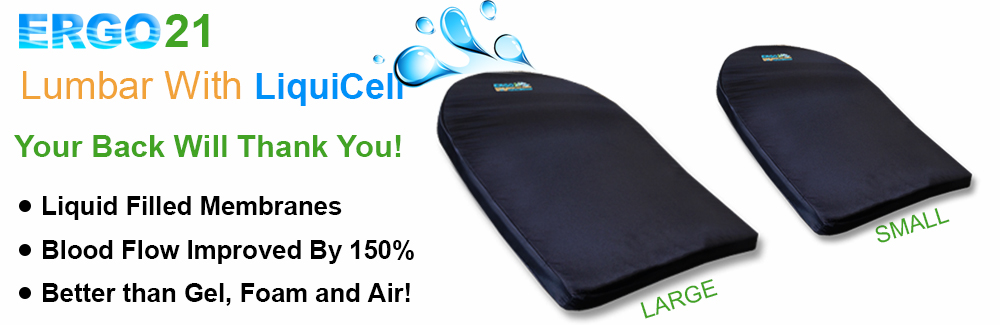 lumbar cushion slider